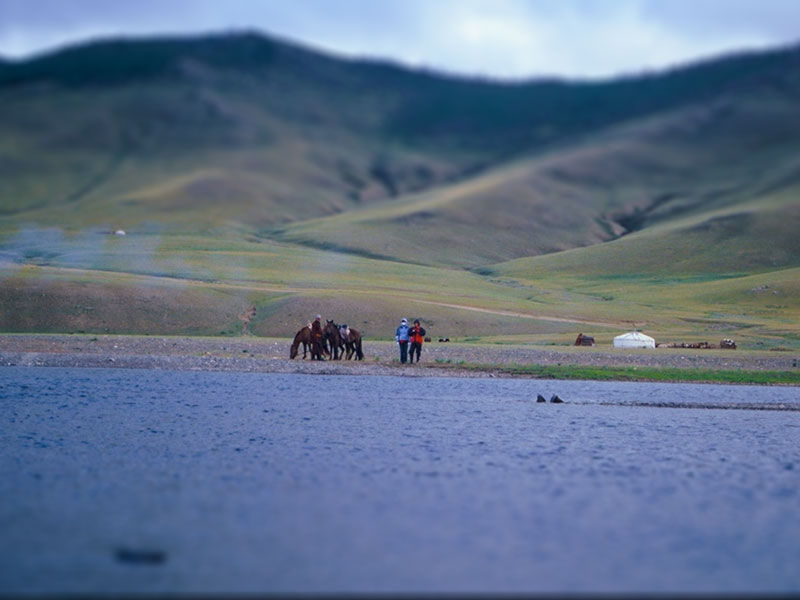 Steppenfuchs Reisen - Pferde am Fluss
