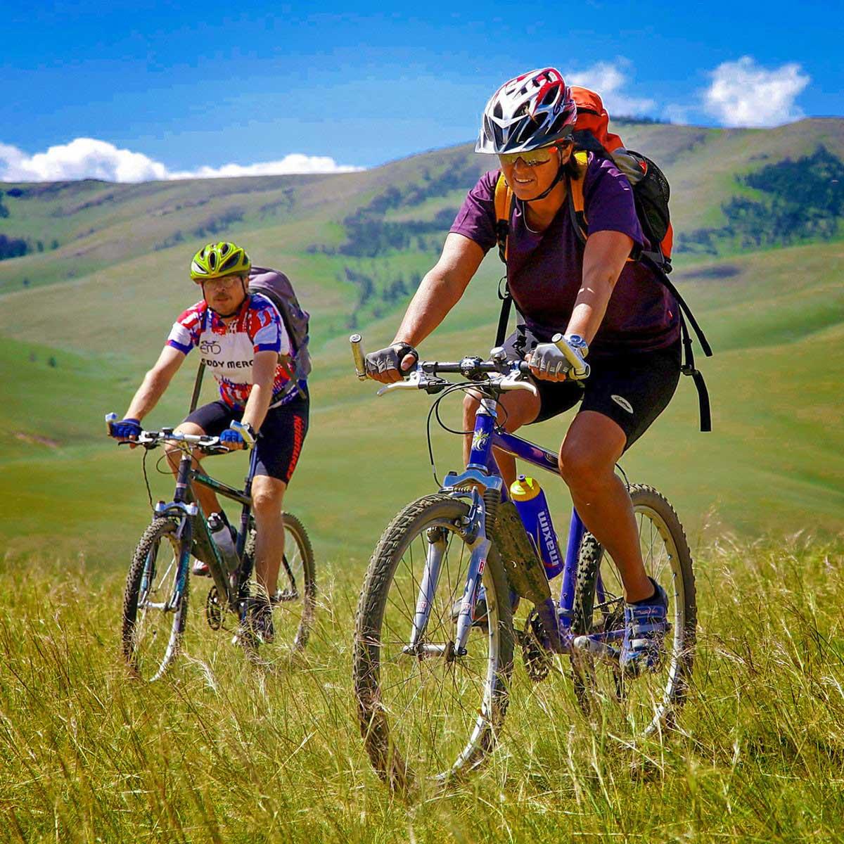 Mountainbike – Höhen und Tiefen