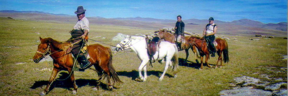 Pferd / Kamel /Jeep 14 Tage