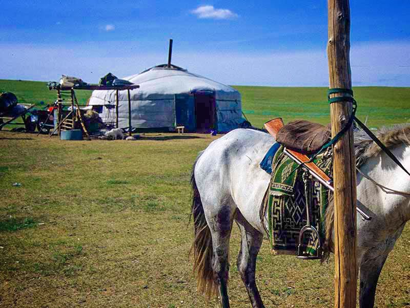 Mongolei Kompakt